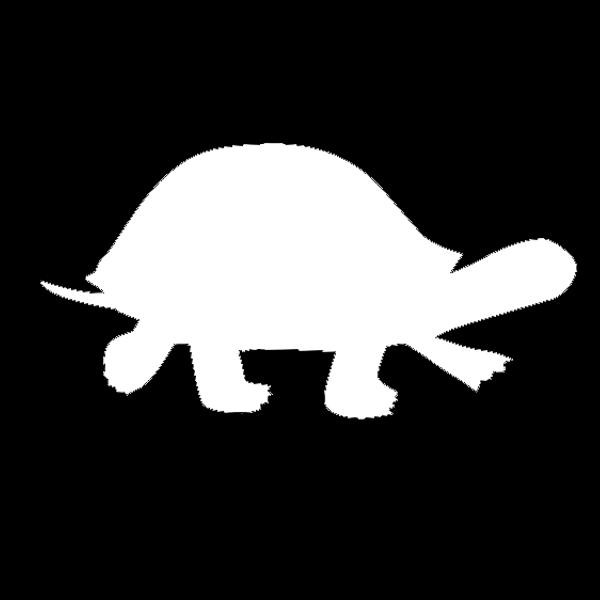 turtle techies